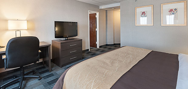 Comfort Inn Ballston Manager's Special at Arlington