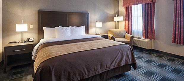 Comfort Inn Arlington at Ballston Manager's Special at Arlington